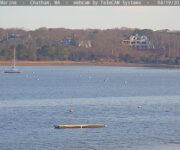 Chatham Harbor Webcam
